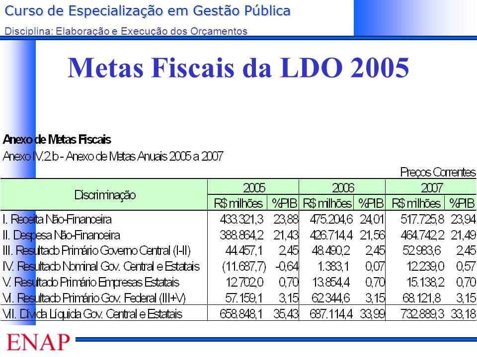 Curso de Especialização em Gestão Pública Disciplina: Elaboração e Execução dos Orçamentos Metas Fiscais da LDO 2005