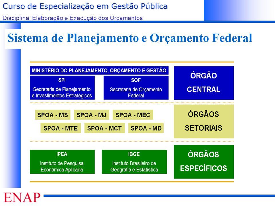 Curso de Especialização em Gestão Pública Disciplina: Elaboração e Execução dos Orçamentos Sistema de Planejamento e Orçamento Federal