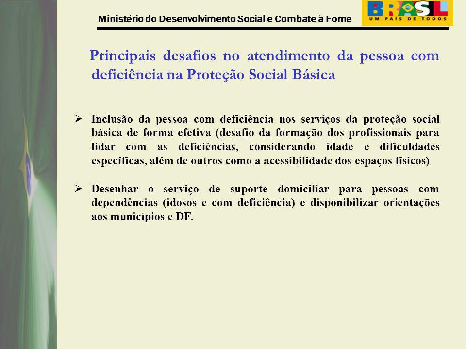 Ministério do Desenvolvimento Social e Combate à Fome Principais desafios no atendimento da pessoa com deficiência na Proteção Social Básica Inclusão