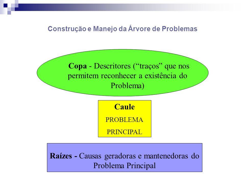 Construção e Manejo da Árvore de Problemas Copa - Descritores (traços que nos permitem reconhecer a existência do Problema) Caule PROBLEMA PRINCIPAL R