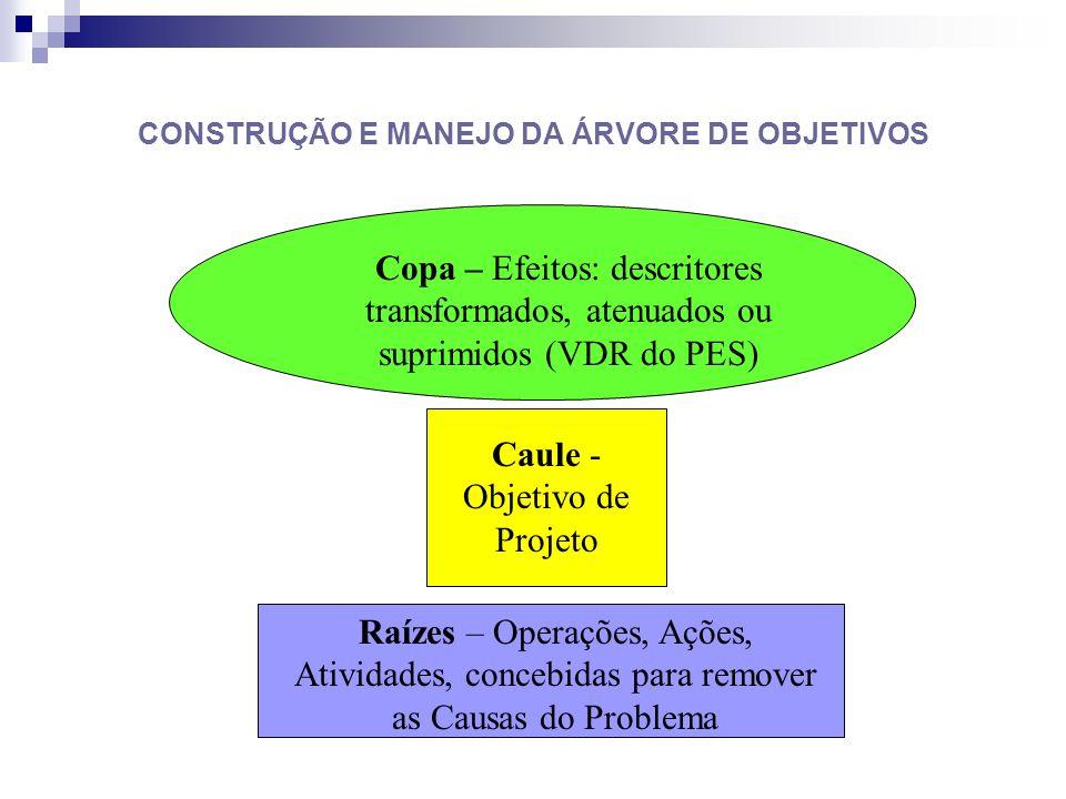 CONSTRUÇÃO E MANEJO DA ÁRVORE DE OBJETIVOS Copa – Efeitos: descritores transformados, atenuados ou suprimidos (VDR do PES) Caule - Objetivo de Projeto