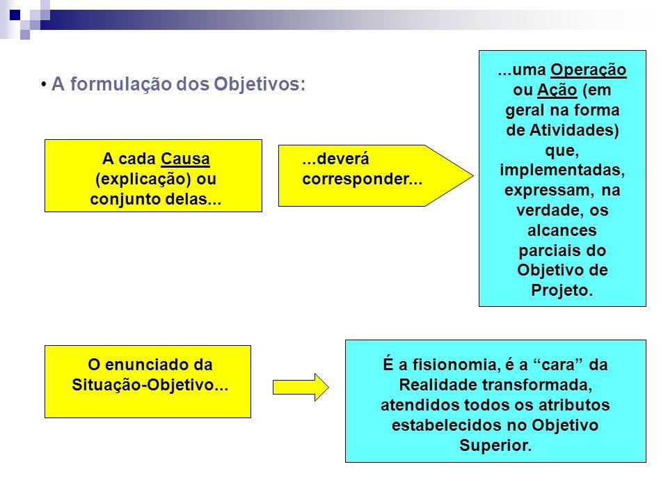 A formulação dos Objetivos: A cada Causa (explicação) ou conjunto delas......deverá corresponder......uma Operação ou Ação (em geral na forma de Ativi
