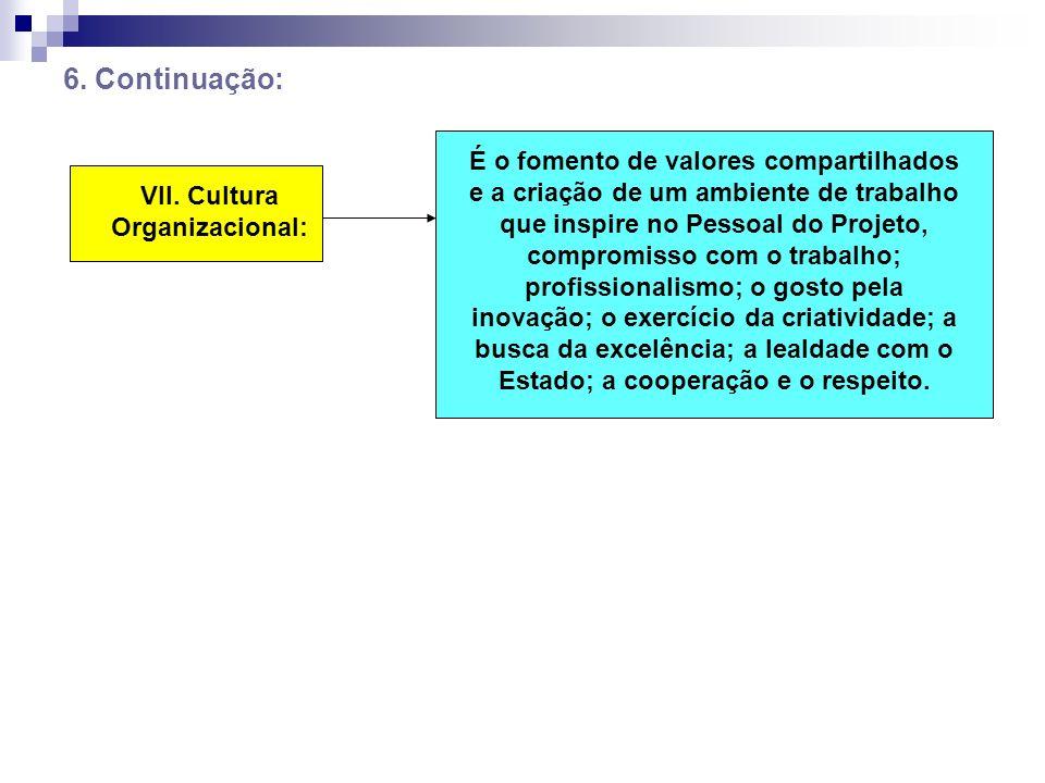 6. Continuação: VII. Cultura Organizacional: É o fomento de valores compartilhados e a criação de um ambiente de trabalho que inspire no Pessoal do Pr