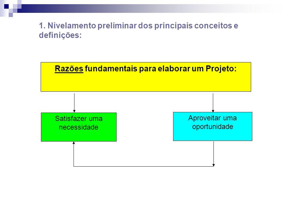 Razões fundamentais para elaborar um Projeto: Satisfazer uma necessidade Aproveitar uma oportunidade 1. Nivelamento preliminar dos principais conceito