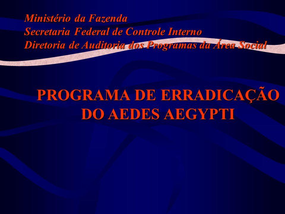 Tipos Constatações Programas –Adequação Controles –Legalidade –Eficácia –Eficiência –Efetividade –Economicidade –Qualidade – –Objeto – –Prazo – –Custo