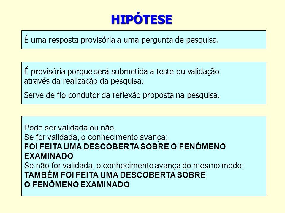 HIPÓTESE É uma resposta provisória a uma pergunta de pesquisa. É provisória porque será submetida a teste ou validação através da realização da pesqui