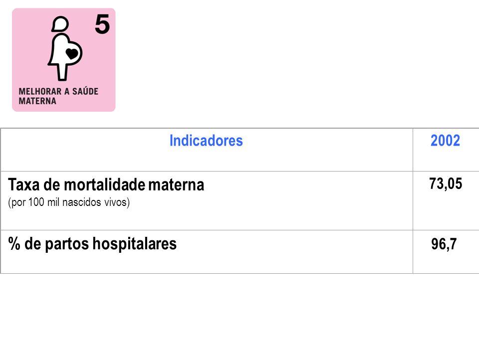 Indicadores2002 Taxa de mortalidade materna (por 100 mil nascidos vivos) 73,05 % de partos hospitalares 96,7