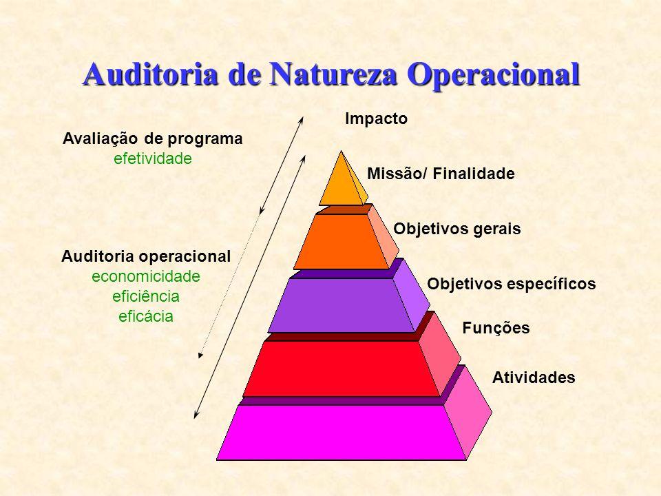 Auditoria de Natureza Operacional Missão/ Finalidade Objetivos gerais Objetivos específicos Funções Atividades Auditoria operacional economicidade eficiência eficácia Avaliação de programa efetividade Impacto