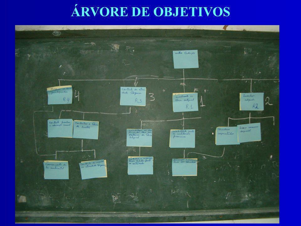 ÁRVORE DE OBJETIVOS