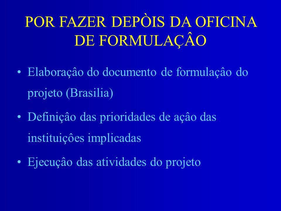 POR FAZER DEPÒIS DA OFICINA DE FORMULAÇÂO Elaboraçâo do documento de formulaçâo do projeto (Brasilia) Definiçâo das prioridades de açâo das instituiçô