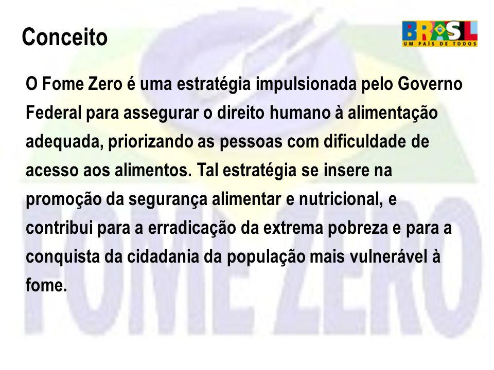 O Fome Zero é uma estratégia impulsionada pelo Governo Federal para assegurar o direito humano à alimentação adequada, priorizando as pessoas com difi