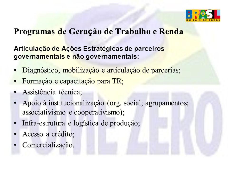 Programas de Gera ç ão de Trabalho e Renda Articulação de Ações Estratégicas de parceiros governamentais e não governamentais: Diagnóstico, mobilizaçã
