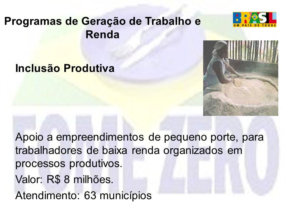 Programas de Geração de Trabalho e Renda Inclusão Produtiva Apoio a empreendimentos de pequeno porte, para trabalhadores de baixa renda organizados em