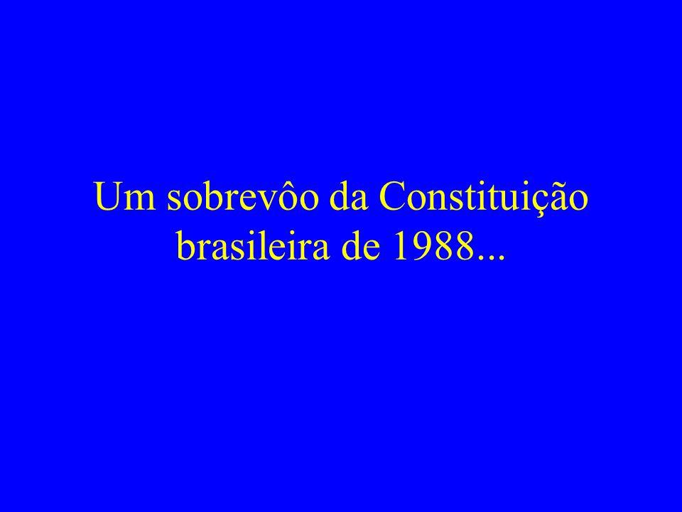 Um sobrevôo da Constituição brasileira de 1988...