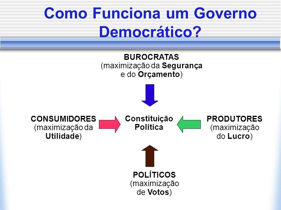 CONSUMIDORES (maximização da Utilidade) POLÍTICOS (maximização de Votos) PRODUTORES (maximização do Lucro) BUROCRATAS (maximização da Segurança e do Orçamento) Constituição Política Como Funciona um Governo Democrático
