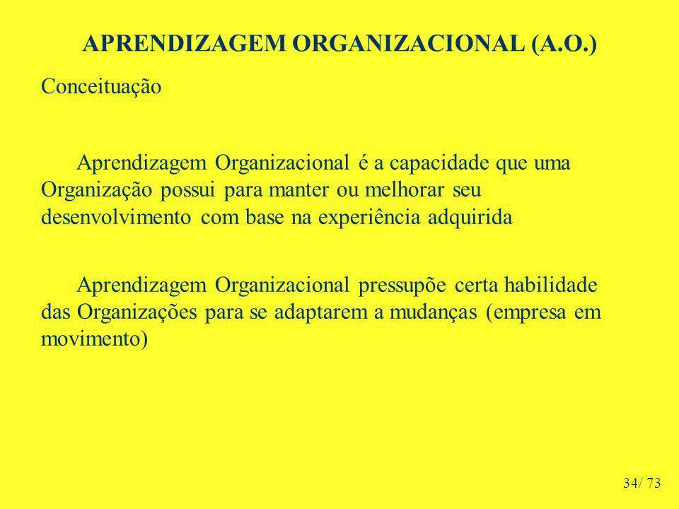 APRENDIZAGEM ORGANIZACIONAL (A.O.) Aprendizagem Organizacional é a capacidade que uma Organização possui para manter ou melhorar seu desenvolvimento com base na experiência adquirida Aprendizagem Organizacional pressupõe certa habilidade das Organizações para se adaptarem a mudanças (empresa em movimento) Conceituação 34/ 73