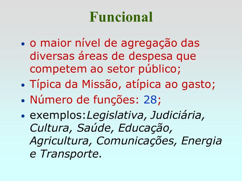 Funcional q Finalidade principal: possibilitar a elaboração de estatísticas sobre os gastos públicos nos principais segmentos em que atuam as organiza
