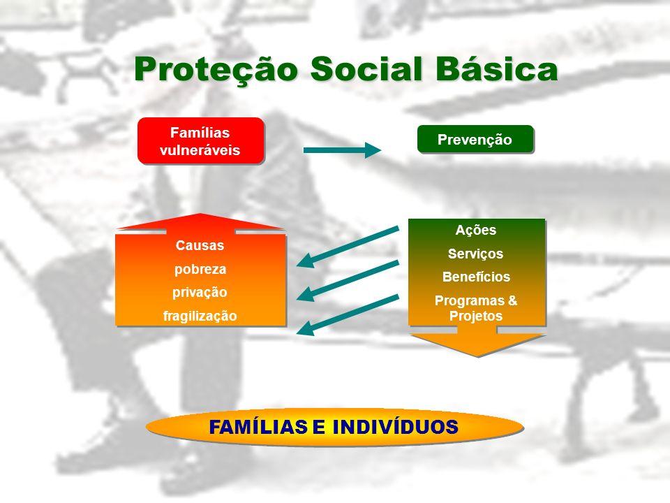 Proteção Social Básica Ações Serviços Benefícios Programas & Projetos Ações Serviços Benefícios Programas & Projetos Famílias vulneráveis Causas pobre