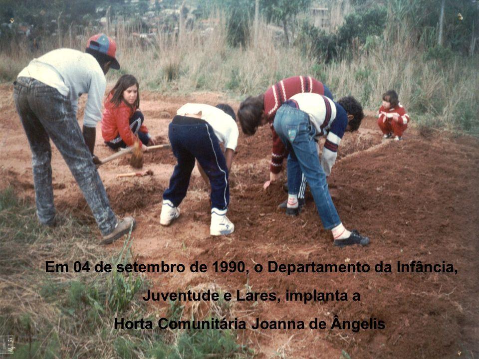 Em 04 de setembro de 1990, o Departamento da Infância, Juventude e Lares, implanta a Horta Comunitária Joanna de Ângelis