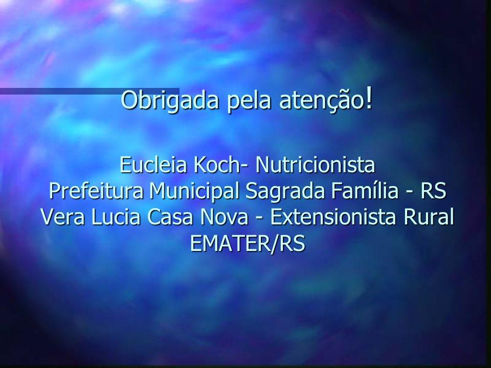 Obrigada pela atenção ! Eucleia Koch- Nutricionista Prefeitura Municipal Sagrada Família - RS Vera Lucia Casa Nova - Extensionista Rural EMATER/RS