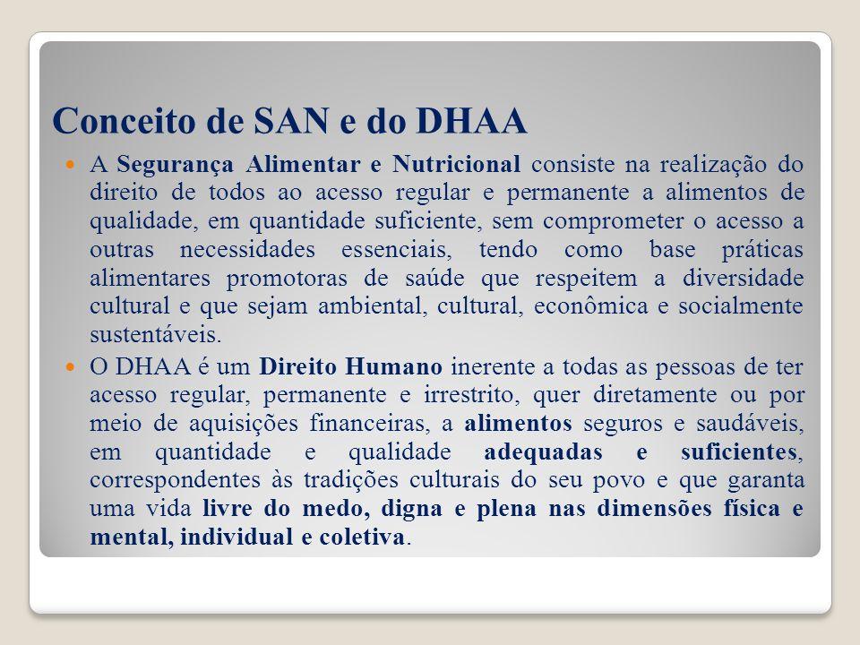 Base legal do DHAA Declaração Universal dos Direitos Humanos (DUDH) Pacto Internacional dos Direitos Econômicos, Sociais e Culturais (PIDESC) Constituição Federal Lei Orgânica de Segurança Alimentar e Nutricional (LOSAN) Outras leis e normas administrativas