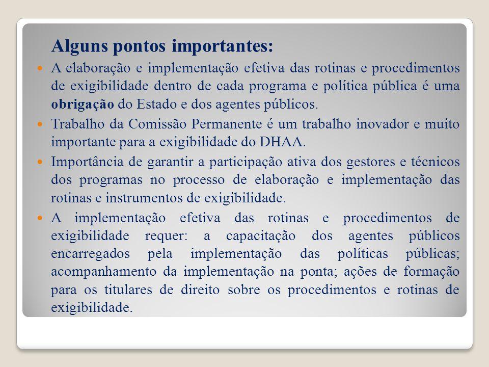Alguns pontos importantes: A elaboração e implementação efetiva das rotinas e procedimentos de exigibilidade dentro de cada programa e política públic
