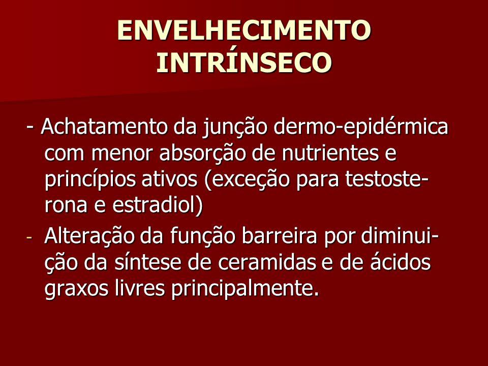 ENVELHECIMENTO INTRÍNSECO - Achatamento da junção dermo-epidérmica com menor absorção de nutrientes e princípios ativos (exceção para testoste- rona e