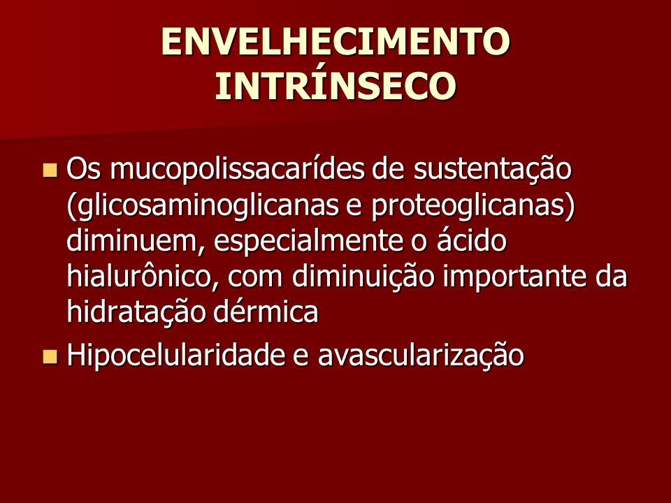ENVELHECIMENTO INTRÍNSECO Os mucopolissacarídes de sustentação (glicosaminoglicanas e proteoglicanas) diminuem, especialmente o ácido hialurônico, com