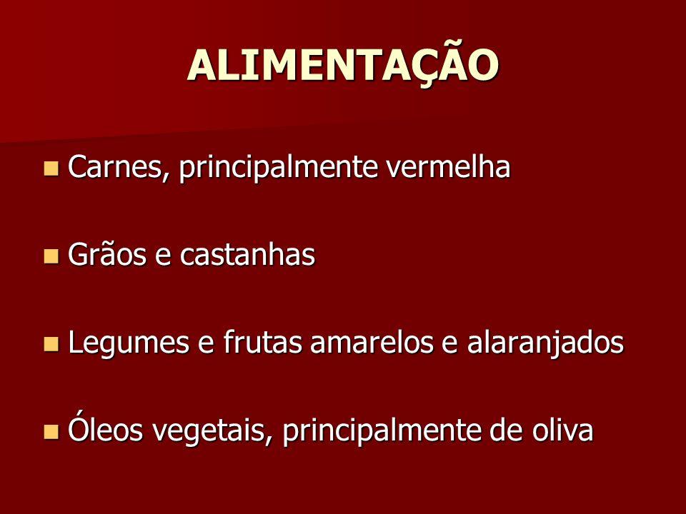 ALIMENTAÇÃO Carnes, principalmente vermelha Carnes, principalmente vermelha Grãos e castanhas Grãos e castanhas Legumes e frutas amarelos e alaranjado