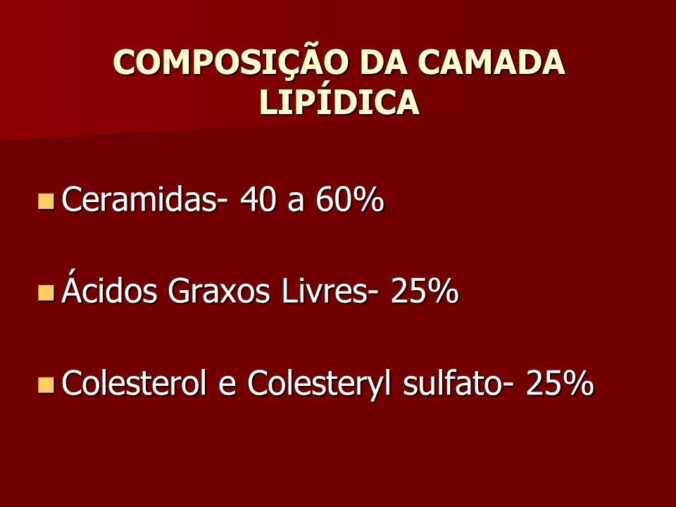 COMPOSIÇÃO DA CAMADA LIPÍDICA Ceramidas- 40 a 60% Ceramidas- 40 a 60% Ácidos Graxos Livres- 25% Ácidos Graxos Livres- 25% Colesterol e Colesteryl sulf