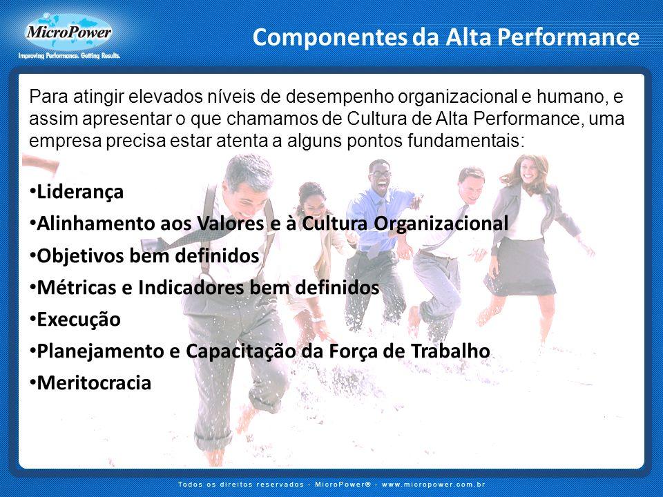 Componentes da Alta Performance Para atingir elevados níveis de desempenho organizacional e humano, e assim apresentar o que chamamos de Cultura de Al