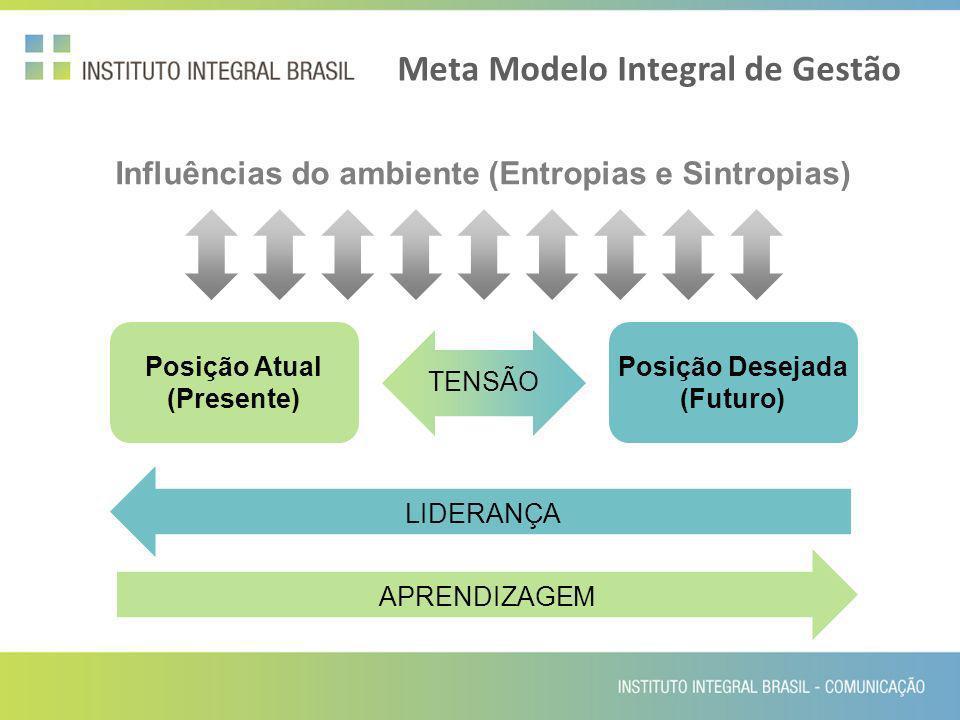 Meta Modelo Integral de Gestão Influências do ambiente (Entropias e Sintropias) Posição Atual (Presente) Posição Desejada (Futuro) TENSÃO LIDERANÇAAPR