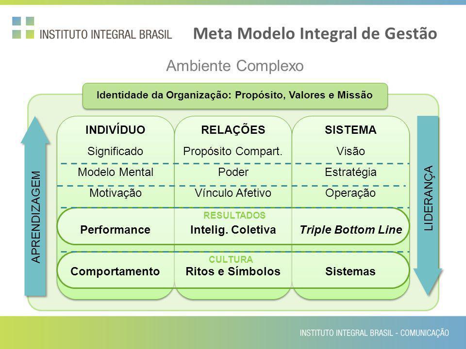 Meta Modelo Integral de Gestão Ambiente Complexo Identidade da Organização: Propósito, Valores e Missão INDIVÍDUO Significado Modelo Mental Motivação