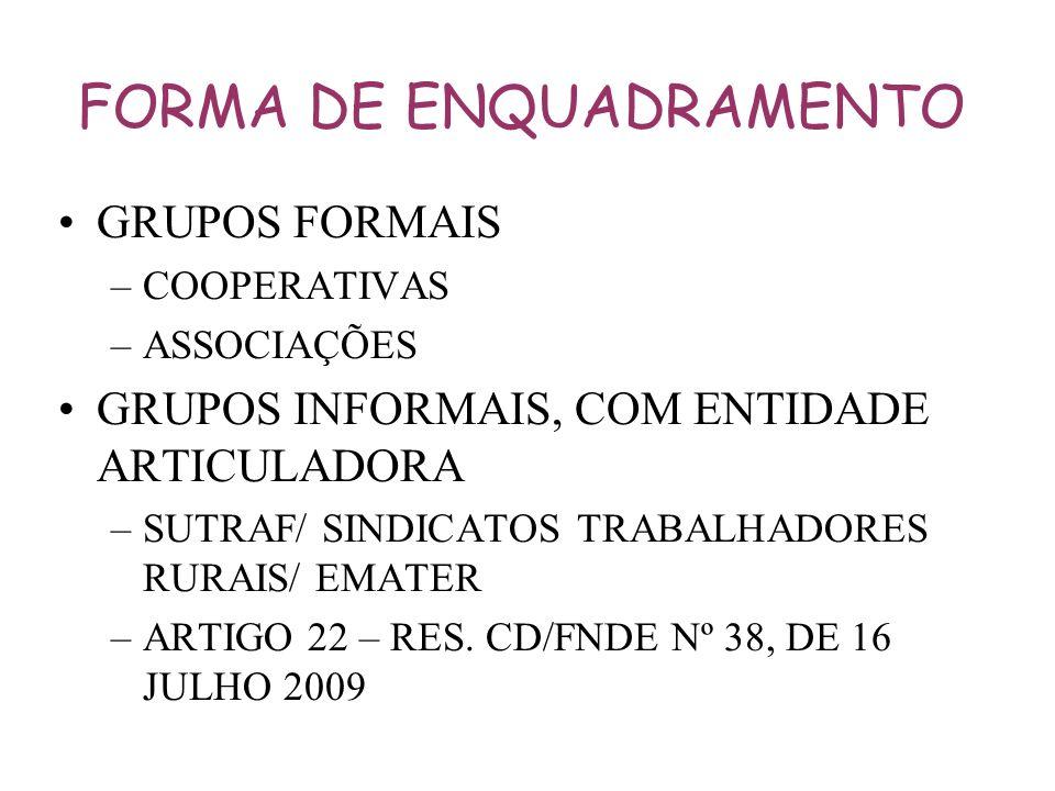 FORMA DE ENQUADRAMENTO GRUPOS FORMAIS –COOPERATIVAS –ASSOCIAÇÕES GRUPOS INFORMAIS, COM ENTIDADE ARTICULADORA –SUTRAF/ SINDICATOS TRABALHADORES RURAIS/