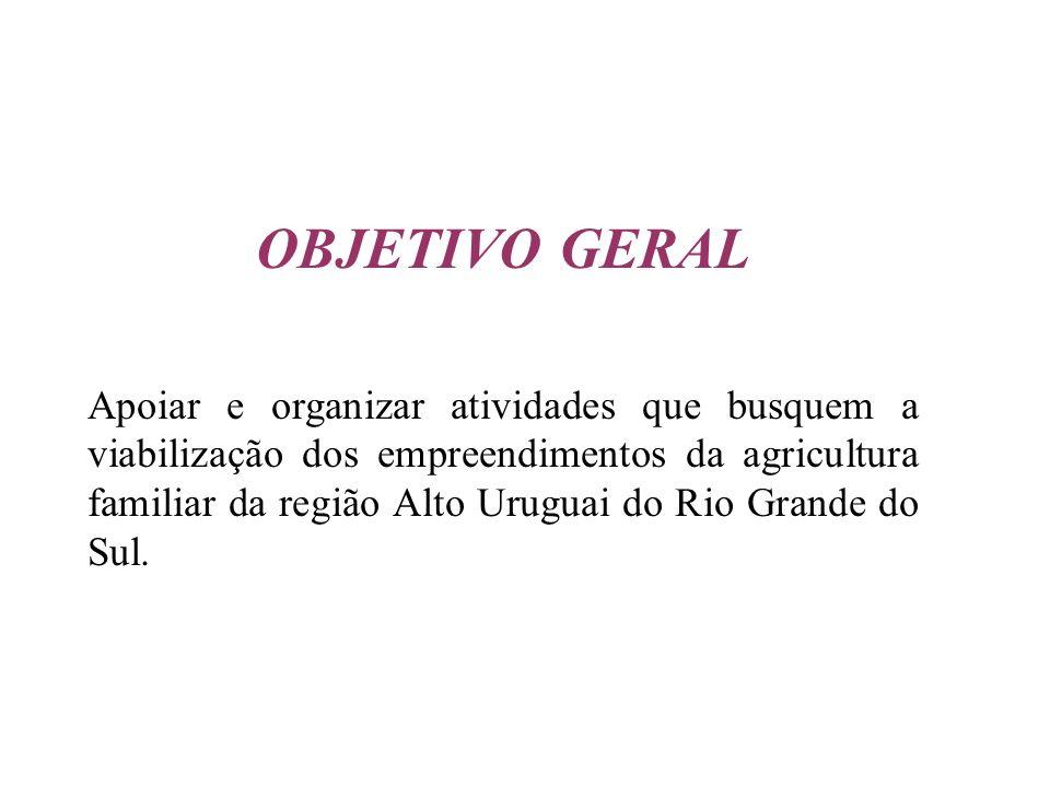 OBJETIVO GERAL Apoiar e organizar atividades que busquem a viabilização dos empreendimentos da agricultura familiar da região Alto Uruguai do Rio Gran