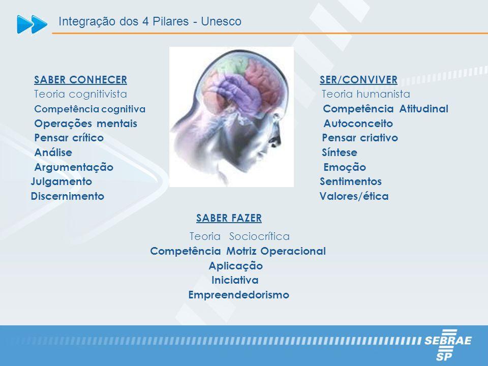 SER/CONVIVER Teoria humanista Competência Atitudinal Autoconceito Pensar criativo Síntese Emoção Sentimentos Valores/ética SABER FAZER TeoriaSociocrít
