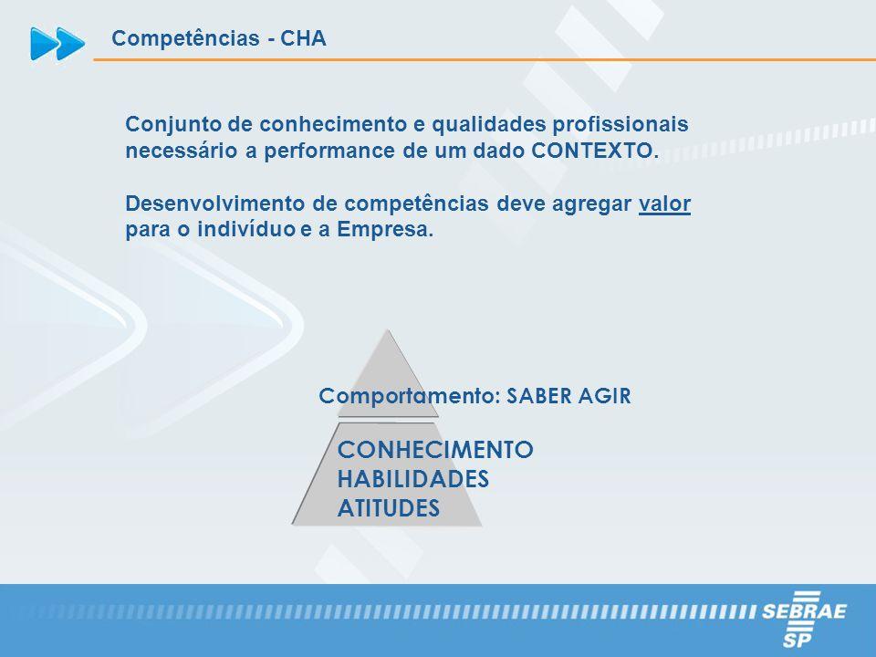 Conjunto de conhecimento e qualidades profissionais necessário a performance de um dado CONTEXTO. Desenvolvimento de competências deve agregar valor p