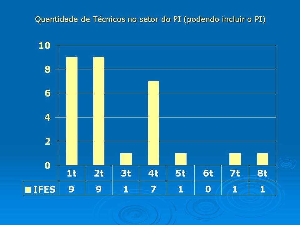 Quantidade de Técnicos no setor do PI (podendo incluir o PI)