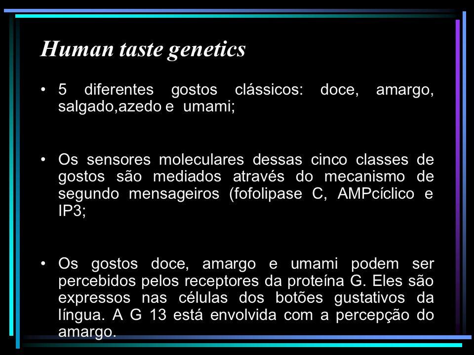 Human taste genetics 5 diferentes gostos clássicos: doce, amargo, salgado,azedo e umami; Os sensores moleculares dessas cinco classes de gostos são me