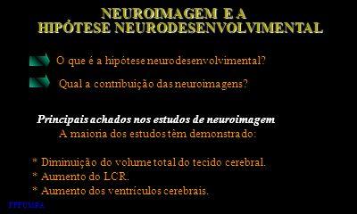 NEUROIMAGEM E A NEUROIMAGEM E A HIPÓTESE NEURODESENVOLVIMENTAL HIPÓTESE NEURODESENVOLVIMENTAL O que é a hipótese neurodesenvolvimental? Qual a contrib