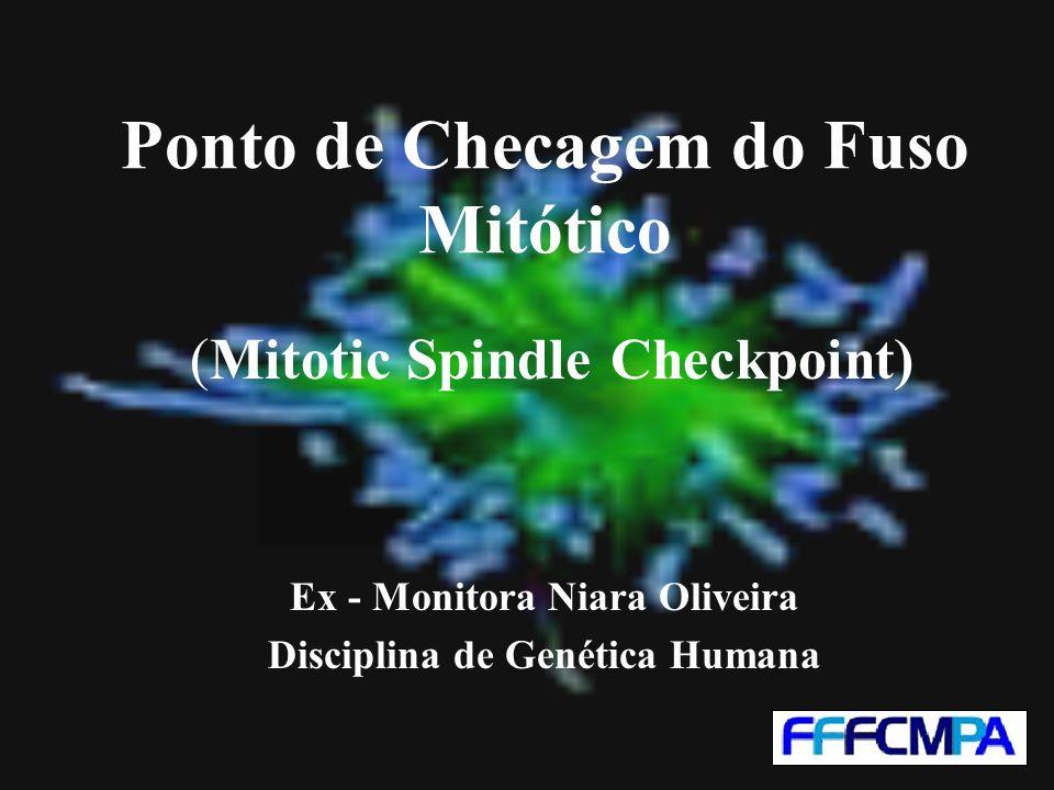 Ponto de Checagem do Fuso Mitótico (Mitotic Spindle Checkpoint) Ex - Monitora Niara Oliveira Disciplina de Genética Humana
