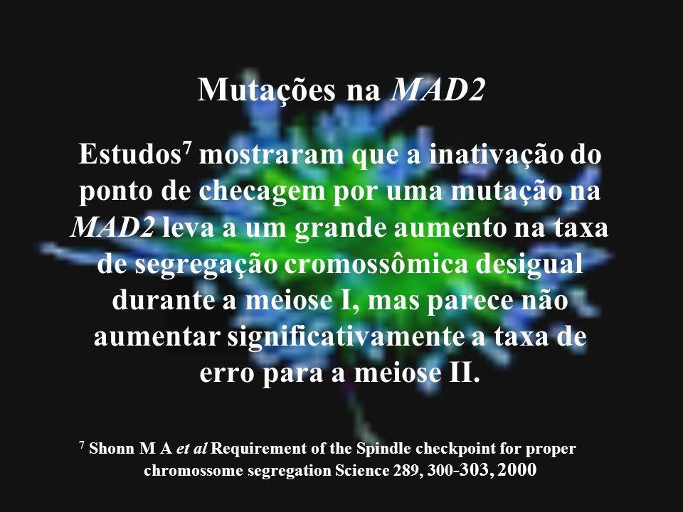 Mutações na MAD2 Estudos 7 mostraram que a inativação do ponto de checagem por uma mutação na MAD2 leva a um grande aumento na taxa de segregação crom