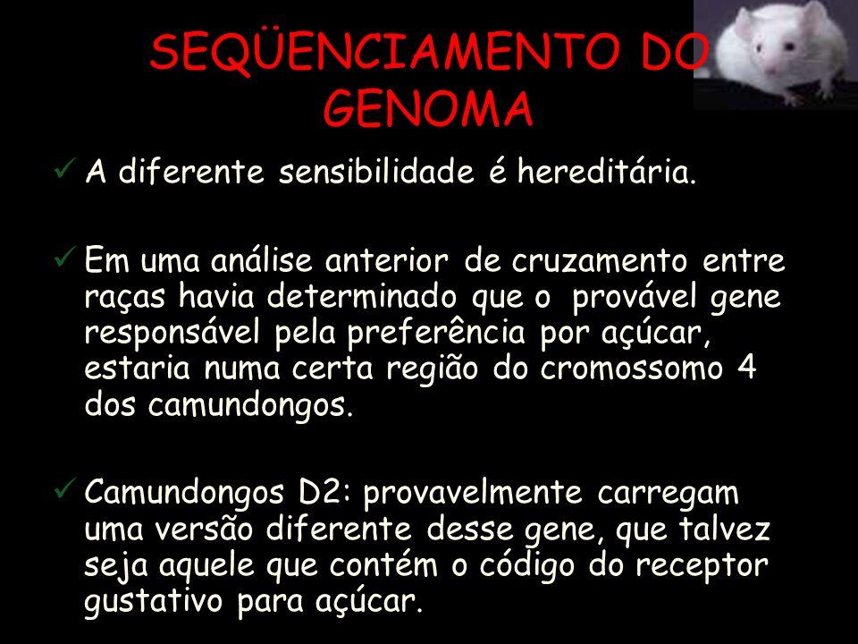 SEQÜENCIAMENTO DO GENOMA O que desencadeou a descoberta foi uma raça de camundongos (D2), que é praticamente insensível a açúcares como a sacarose e a