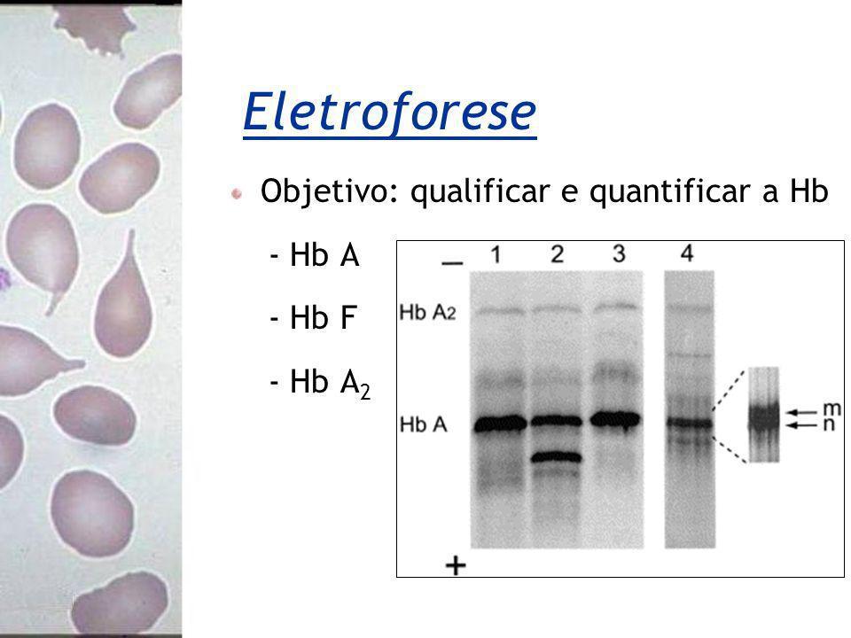 Objetivo: qualificar e quantificar a Hb - Hb A - Hb F - Hb A 2 Eletroforese