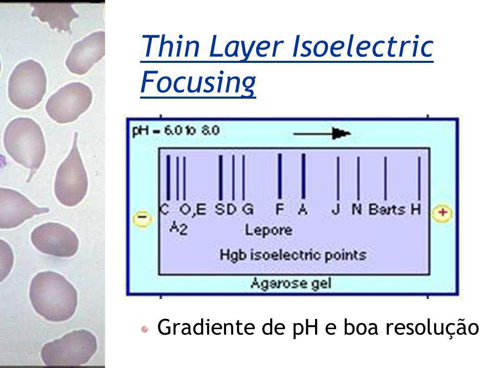 Thin Layer Isoelectric Focusing Gradiente de pH e boa resolução