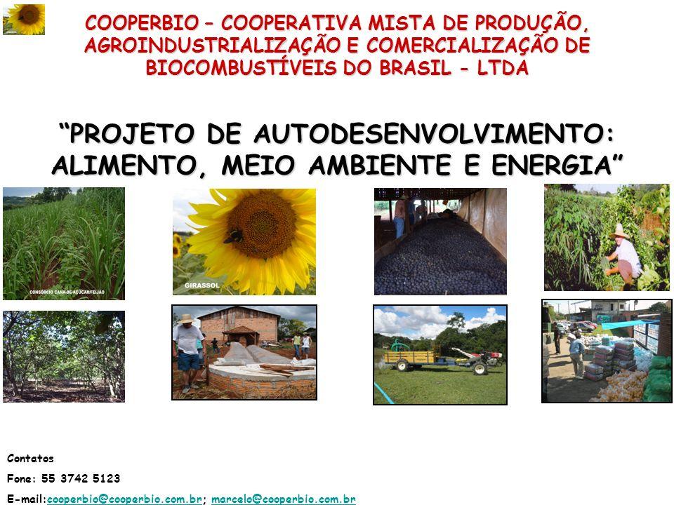 COOPERBIO – COOPERATIVA MISTA DE PRODUÇÃO, AGROINDUSTRIALIZAÇÃO E COMERCIALIZAÇÃO DE BIOCOMBUSTÍVEIS DO BRASIL - LTDA PROJETO DE AUTODESENVOLVIMENTO: