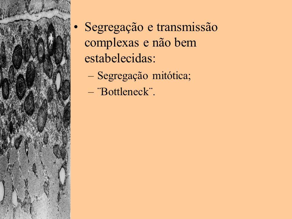 Segregação e transmissão complexas e não bem estabelecidas: –Segregação mitótica; –¨Bottleneck¨.