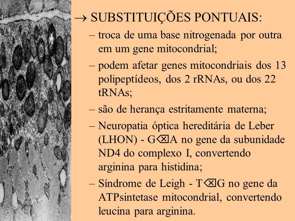 SUBSTITUIÇÕES PONTUAIS: –troca de uma base nitrogenada por outra em um gene mitocondrial; –podem afetar genes mitocondriais dos 13 polipeptídeos, dos