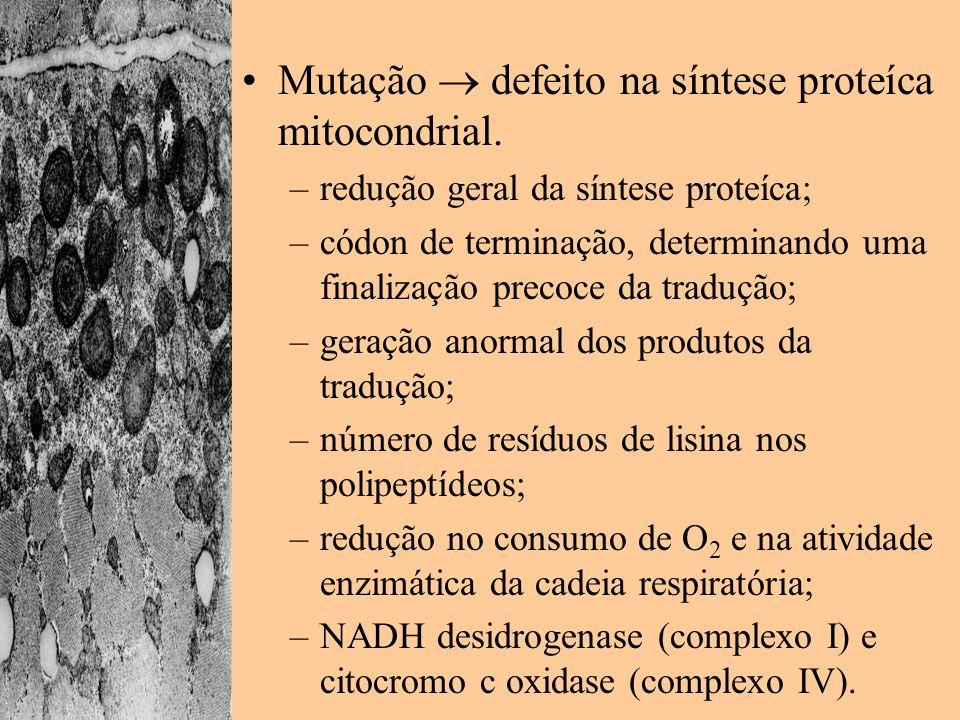 Mutação defeito na síntese proteíca mitocondrial. –redução geral da síntese proteíca; –códon de terminação, determinando uma finalização precoce da tr
