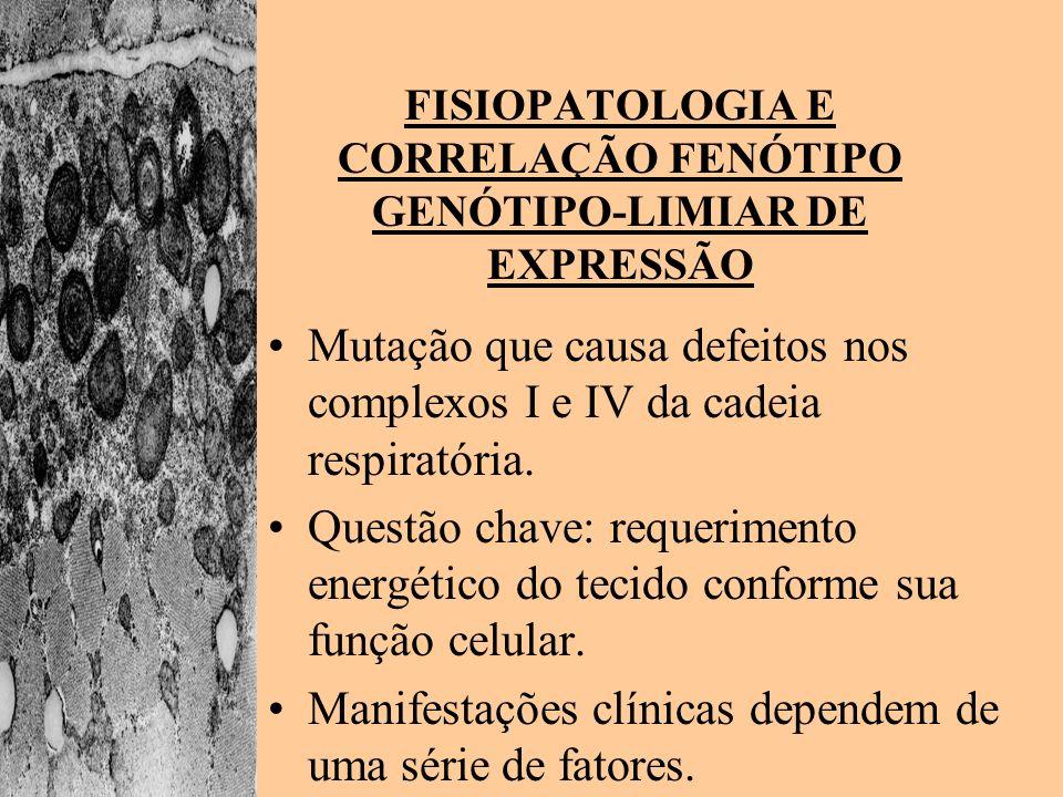 FISIOPATOLOGIA E CORRELAÇÃO FENÓTIPO GENÓTIPO-LIMIAR DE EXPRESSÃO Mutação que causa defeitos nos complexos I e IV da cadeia respiratória. Questão chav